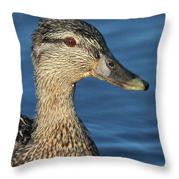 Mama Black Duck Throw Pillow