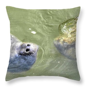 Manatee Love Throw Pillow