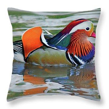 Mandarin Duck-central Park-13 Throw Pillow