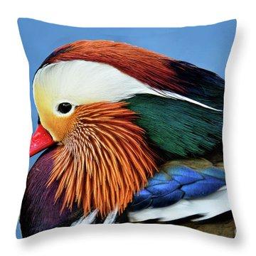 Mandarin Duck Portrait 1 Throw Pillow