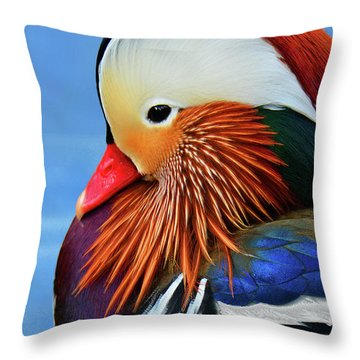 Mandarin Duck Portrait 3 Throw Pillow