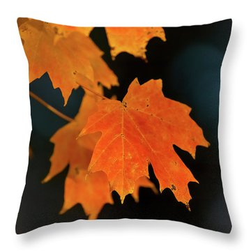 Maple-1 Throw Pillow