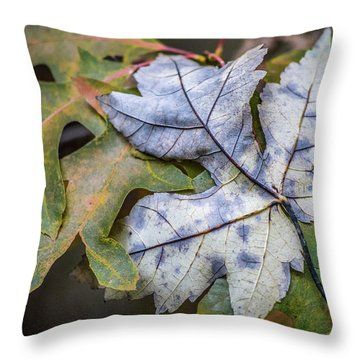 Maple And Oak Throw Pillow