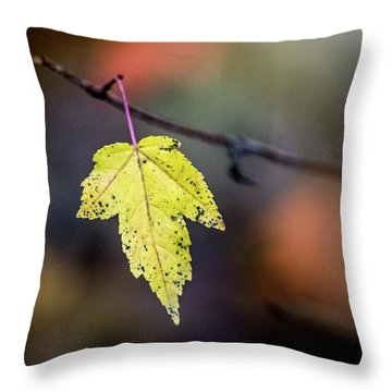 Throw Pillow featuring the photograph Maple Flag by Michael Arend