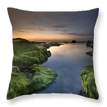 Marine Sunset Throw Pillow