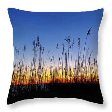 Marsh Grass Silhouette  Throw Pillow