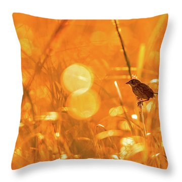 Marsh Sparrow Throw Pillow