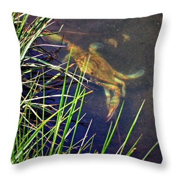 Throw Pillow featuring the photograph Maryland Blue Crab Lurking In An Assateague Marsh by Bill Swartwout Fine Art Photography
