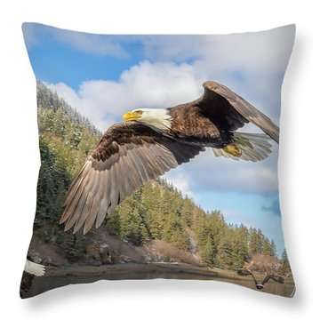 Master Of The Skies Throw Pillow