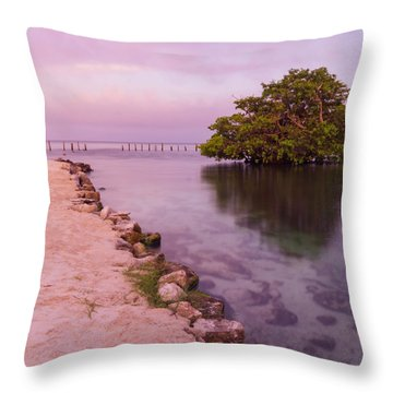 Mayan Sea Reflection 2 Throw Pillow