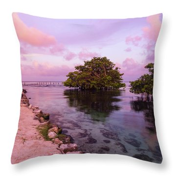 Mayan Sea Reflection Throw Pillow