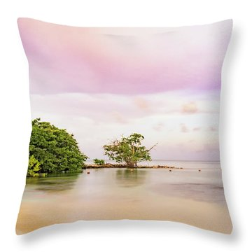 Mayan Sea Throw Pillow