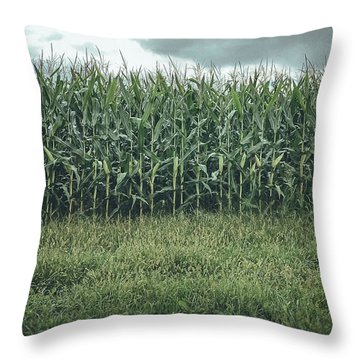 Throw Pillow featuring the photograph Maze Field by Steve Stanger