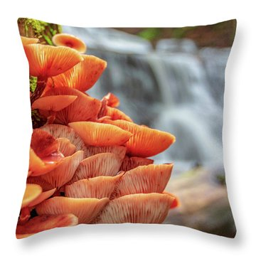 Mcconnell's Mills Mushrooms Throw Pillow