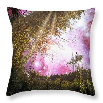 Meadow Starry Night Throw Pillow