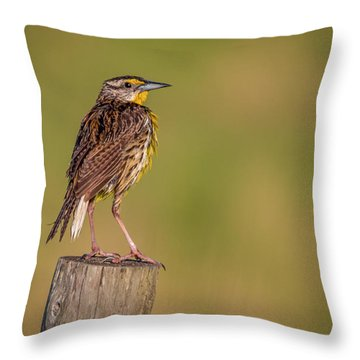 Throw Pillow featuring the photograph Meadowlark On Post by Tom Claud