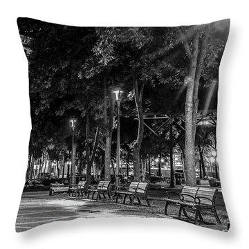 Mears Park Throw Pillow