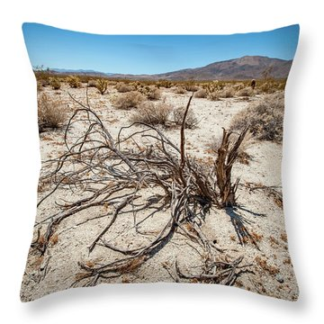 Mesquite In The Desert Sun Throw Pillow