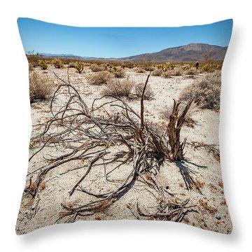 Mesquite In The Desert Sun Throw Pillow