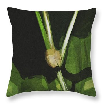 Mexican Bean Beetle Insect Pest Throw Pillow