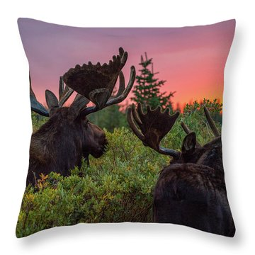 Mighty Giants Enjoy A Sunrise Breakfast Throw Pillow