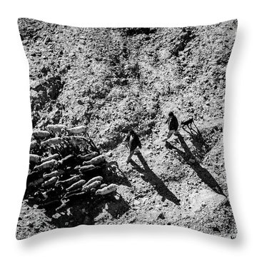 Throw Pillow featuring the photograph Migration by Awais Yaqub