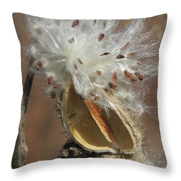 Milkweed Burst Throw Pillow