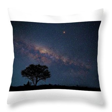 Milky Way Over Africa Throw Pillow