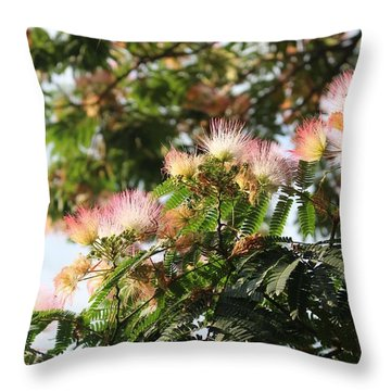 Mimosa Tree Flowers Throw Pillow