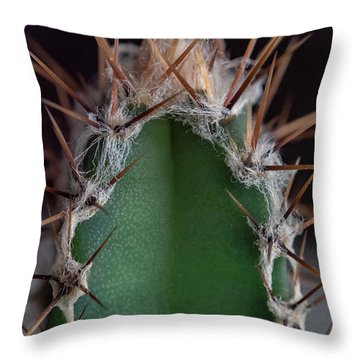 Mini Cactus Up Close Throw Pillow