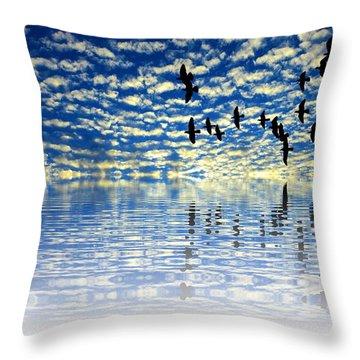 Mirroring Sky Throw Pillow