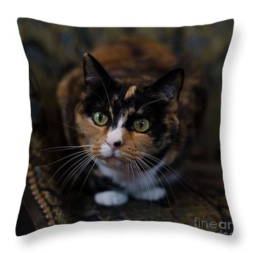 Mischa Throw Pillow