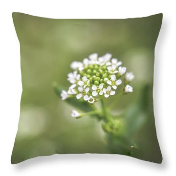 Throw Pillow featuring the photograph Miss You by Michelle Wermuth