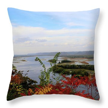 Mississippi River In The Fall Throw Pillow