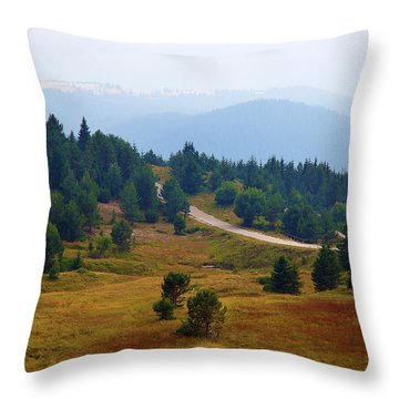Throw Pillow featuring the photograph Misty Afternoon by Milena Ilieva