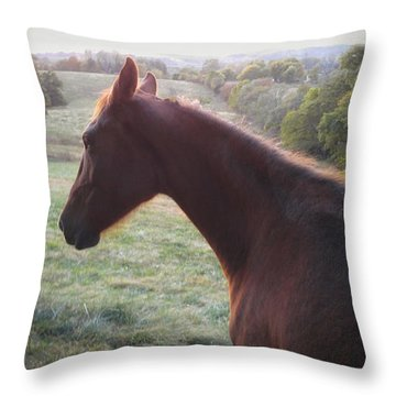 Throw Pillow featuring the photograph Misty by Carl Young