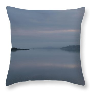 Misty Day Throw Pillow