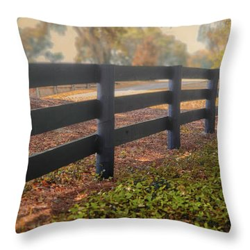 Misty Morning Walk Throw Pillow