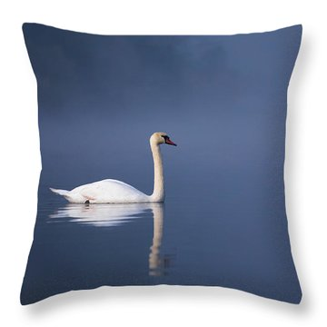 Misty River Swan 2 Throw Pillow