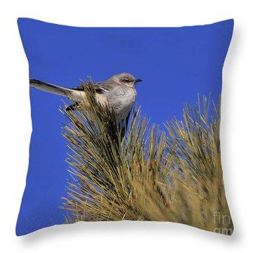 Mockingbird In White Pine Throw Pillow