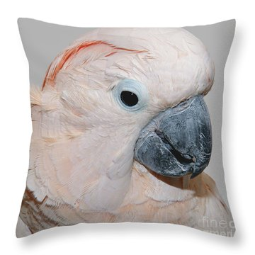 Throw Pillow featuring the photograph Moluccan Cockatoo by Debbie Stahre