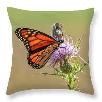 Throw Pillow featuring the photograph Monarch Butterfly On Thistle 1 by Lara Ellis
