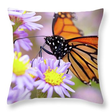 Monarch Close-up Throw Pillow