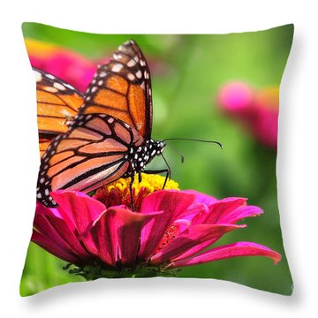 Monarch Visiting Zinnia Throw Pillow