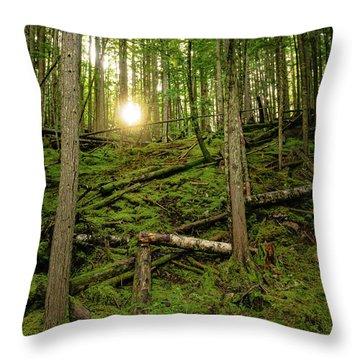 Monashee Forest Portrait Throw Pillow