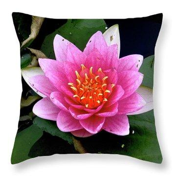Monet Water Lilly Throw Pillow