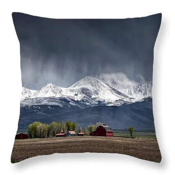 Montana Homestead Throw Pillow
