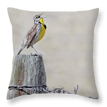 Montana Meadowlark's Spring Song Throw Pillow