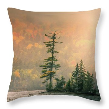 Throw Pillow featuring the photograph Moody Autumn Morning On Moosehead Lake by Dan Sproul