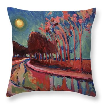 Moon Night At The Canal Throw Pillow